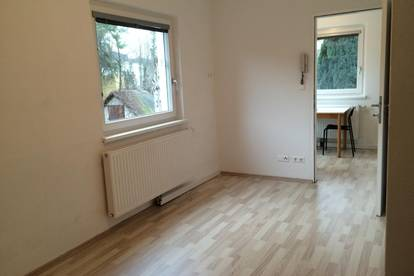 Apartment in Hietzing