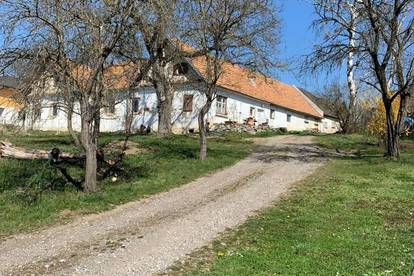 Vierkanthof in idyllischer Ruhelage mit viel Potential im Thermengebiet Bad Blumau