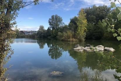 Wieselburg/Bodensdorf: modernes Einfamilienhaus direkt am See, H4