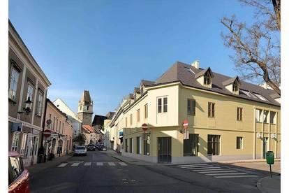 Top Wohnungen  mit Burgblick und Pool