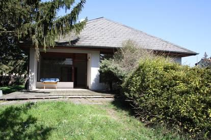 Private Nutzung und/ oder gewerbliche Nutzung - Großfamilien- und WG-Eignung +++ 240 m² Mehrfamilienhaus in Tribuswinkel