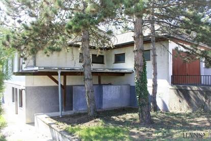 240 m² Mehrfamilienhaus in Tribuswinkel + Private Nutzung und/ oder gewerbliche Nutzung - Großfamilien- und WG-Eignung