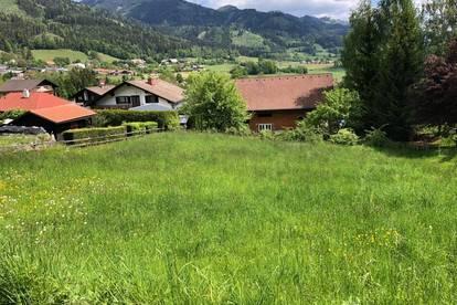 Schöner Baugrund Waldnähe in Parschlug