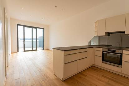 Erstbezug: Moderne Citywohnung mit 21m2 Dachterrasse + Göttweig-Blick + Fitness Club