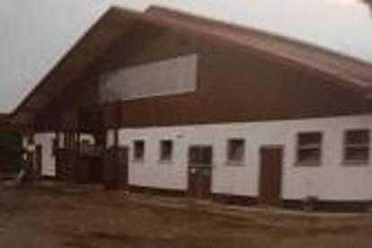 Geräumige Lager-Gwerbehalle zu vermieten