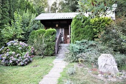 DB Immobilien - entzückendes kleines Haus mit Gartenparadies