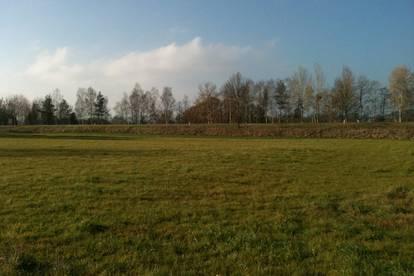 Gewerbe-Grundstück, Betriebs-Bauland