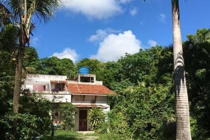 Eine Oase 30km vom Stadtzentrum von Recife, Pernambuco - Brasilien