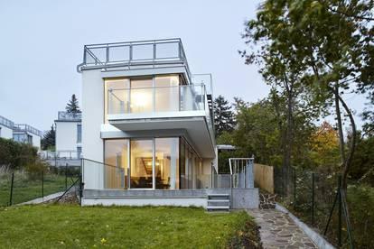 Einfamilienhaus bei den Wiener Weinbergen.