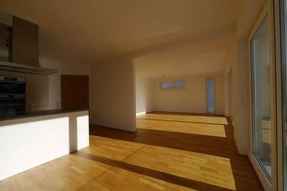Moderne, neuwertige 3 Zimmer Wohnung, ab sofort zu vermieten