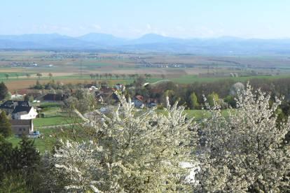 Aussichtslage 6 km vor St. Pölten, Dachgeschoß, Nähe Golfplatz Goldegg/Neidling