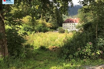 Baugrundstück in Trieben