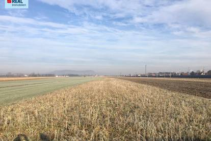 Landwirtschaftliche Fläche - Acker, Bio zertifiziert - Tillmitsch bei Leibnitz