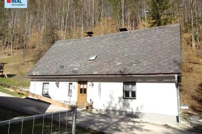 Wohn- oder Ferienhaus im Nationalpark Gesäuse / St. Gallen