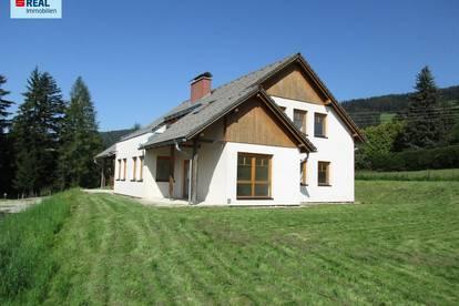 Zinshaus auch als Ferienwohnungen geeignet