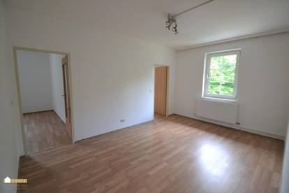 Großzügig geschnittene Wohnung mit Wohnzimmer, große Küche und 2 Schlafzimmer