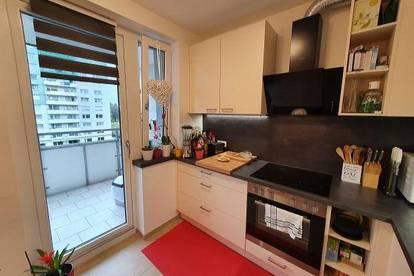 Neu sanierte Wohnung zu vermieten