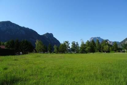 Ebensee: 2.335m² sonniger Grund - keine 100m vom See entfernt!