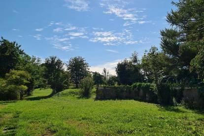++ Landhaus in schöner Lage mit großem Garten ++