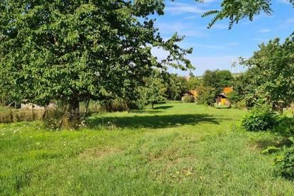 ++ schöne Lage mit großem Garten ++ Großräumiges Landhaus ++