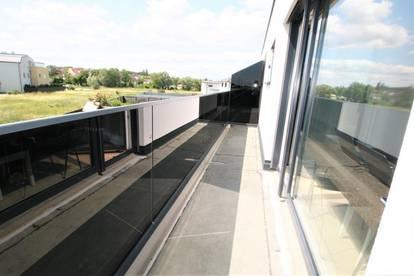 +++ Moderne Doppelhaushälfte++ 300m² Gst.+ hochwertig ausgestattet+ nahe Wien 8 km entfern+ gute Anbindung+ Gartenglück für die ganze Familie +++