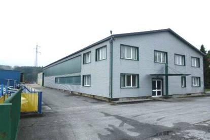 Lagerhallen mit Büroflächen in der Stadtgemeinde Fürstenfeld zu kaufen!