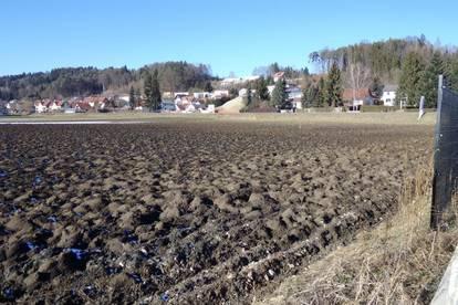 Großer Gewerbegrund (22.791m²) in Toplage in der Nähe von Gleisdorf!