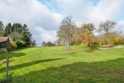 Grundstück mit Grünlandanteil in Gadenweith