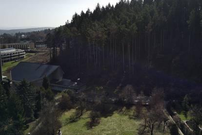 Grün gelegene(s) Baugrundstück(e) in ruhiger Sackgasse nahe Wiener Neustadt