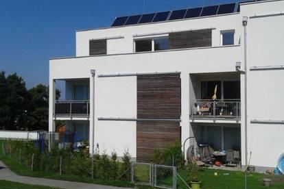 Traismauer. Geförderte 3 Zimmer Wohnung | Dachterrasse | Miete mit Kaufrecht.