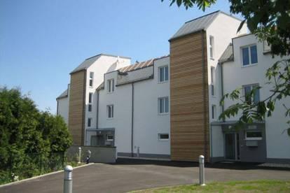 Schönkirchen-Reyersdorf. Geförderte 3 Zimmer Wohnung | Balkon | Miete mit Kaufoption.
