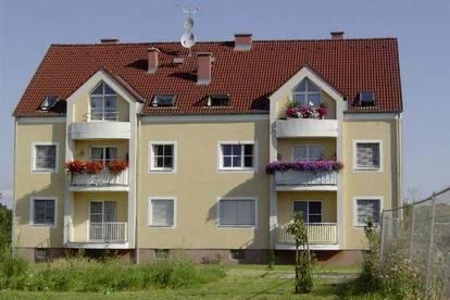 Zellerndorf. Geförderte 1 Zimmer Mietwohnung.