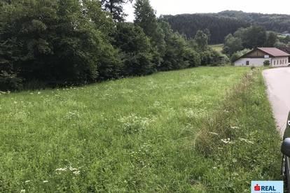 Baugrund Nähe Loosdorf