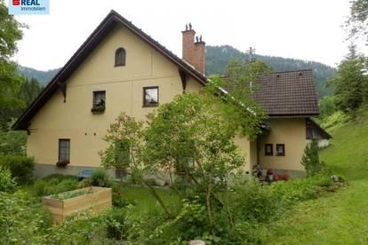 Mehrparteienhaus im Mariazellerland