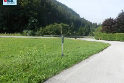 Grundstück in Neuberg an der Mürz-Kapellen