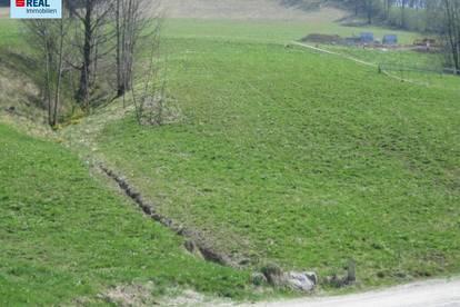 Baugrund in Waidhofen an der Ybbs