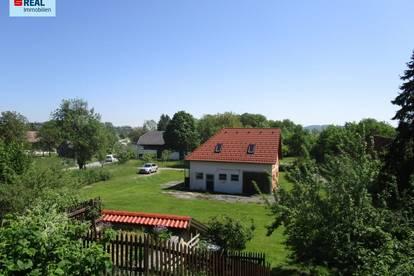 Grünland mit projektiertem Wohnhaus und Obstgarten