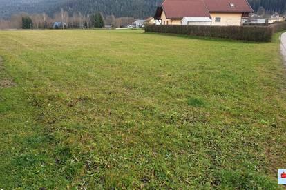 Großzügiger Baugrund in Weitensfeld
