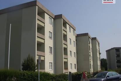 Provisionsfreie 1-Zimmer Genossenschaftswohnung