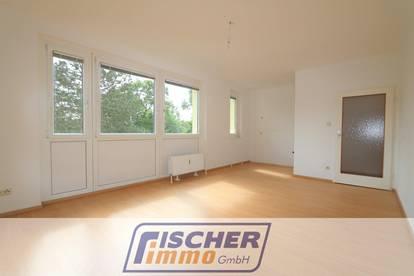 ERSTBEZUG NACH SANIERUNG! Gemütliche Single-Wohnung mit uneinsehbarem Grünblick in Zentrumsnähe