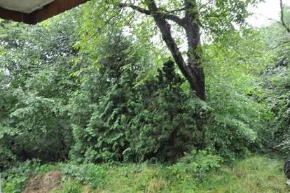 Möbliertes Apartment in Lochau mit Blick ins Grüne!!