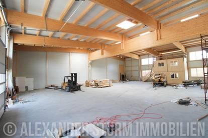 ERSTBEZUG   vielseitig nutzbare Lager-/ Produktionshalle in Hallein