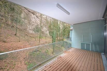 Riedenburg | neuwertige 4-Zimmer Wohnung in Altstadtnähe