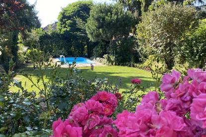 edles Haus mit Pool in Grünruhelage | ZELLMANN IMMOBILIEN