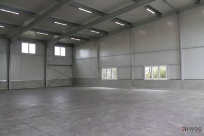 Moderne Halle für Produktion/Werkstatt/Lager! 350m²