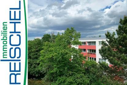 Maria Enzersdorf - mit West-Loggia und Blick  ins Grüne