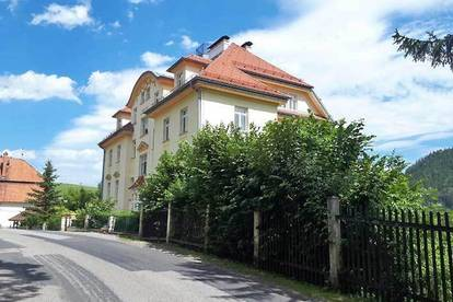 Stilvolle Wohnung im K&K Stil mit Autoabstellplatz zu mieten in 2673 Breitenstein am Semmering, Obj. 12465-1-CL