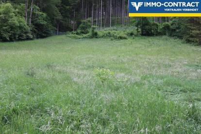 Zentrumsnähe... Perfekte Grundstücksgröße mit viel Garten!