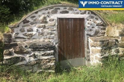 Haus mit vielen Möglichkeiten 10 Min von Zwettl!