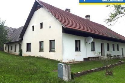 Altes Bauernhaus mit viel Eigengrund in Ruhelage